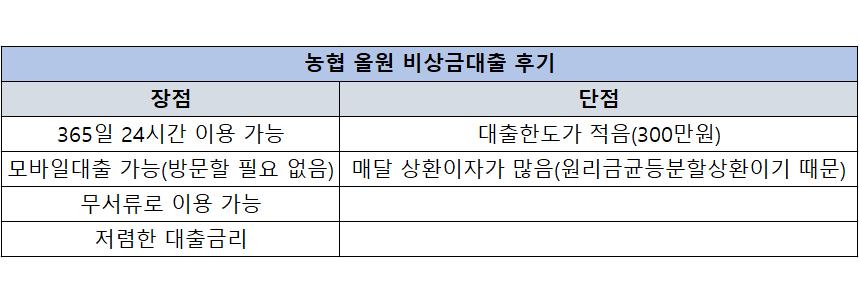 농협 올원 비상금대출 후기(장점과 단점)